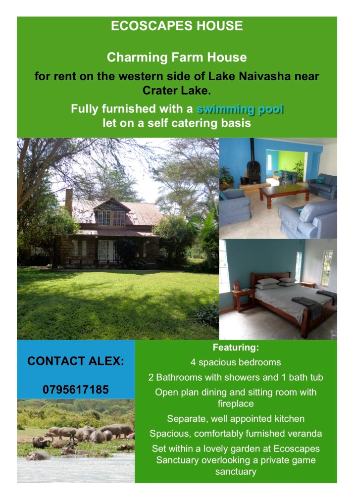 Ecoscapes house advert may 2019